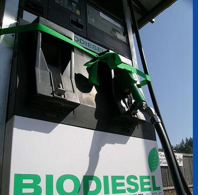 Biodiesel an der Tanke / horationNailknot_Rob Elam / flickr