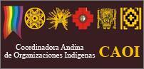 logo caoi