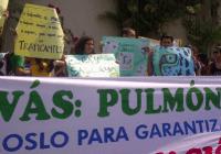 Proteste gegen den Holzeinschlag im Naturschutzgebiet Bosawas. Foto: Pulsar