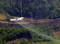 kolumbien fumigacion. Foto: Comision Intereclesial de Justicia y Paz  (CC BY-NC-SA 2.5 CO)