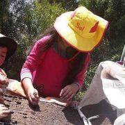 La Paz: Gemeinschaft säen – Der Nachbarschaftsgarten Lak´a Uta