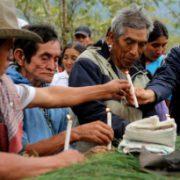 Mord an renommierter Umweltschützerin schockiert die Welt