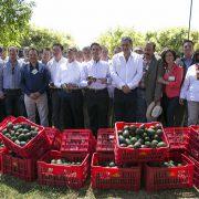 Unüberbrückbarer Graben zwischen Agrarexport und kleinbäuerlicher Landwirtschaft