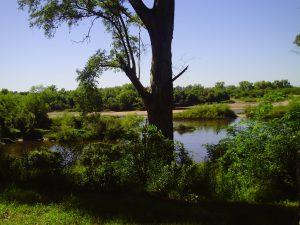 Nicht im Bild: Die chemischen Giftstoffe in Wasser und Boden / Foto: REDES