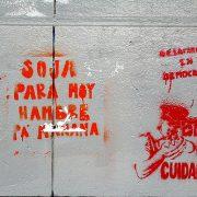 Argentinische Wissenschaftler*innen berichten zu Gesundheits- und Umweltfolgen von Gensoja