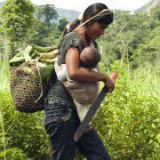 Ecuadors Regierung gegen Indigene und Umweltschützer*innen