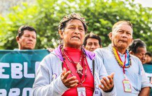 Indigene Frau protestiert