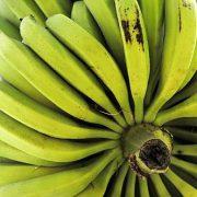 Chiquita zahlte Millionen an bewaffnete Akteure in Kolumbien