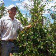 Alternative Landwirtschaft – Costa Ricas Kleinbäuer*innen suchen sich Nischen