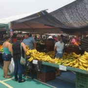 Alternative Landwirtschaft: Costa Ricas Kleinbauern suchen sich Nischen