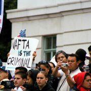 NAFTA und Landwirtschaft: Hinter den Blättern des Nopal