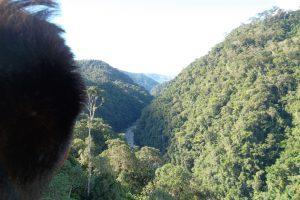 Cordillera del Cóndor