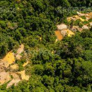 Regierung macht Auflösung von Schutzgebiet im Amazonas rückgängig