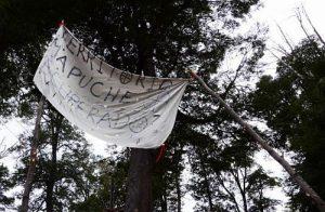 """Patagonien: """"Wieder in Besitz genommenes Mapuche-Territorium"""" steht auf dem Transparent / Foto: desinformemonos"""