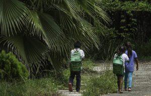 Die Bevölkerung aus dem Ejido Boca Chajul lebt mit der Ölpalme / Foto: Moysés Zúñiga Santiago, Mongabay/desinformemonos