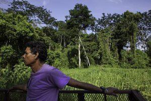 Rafael Lombrera, Forschungsassistent und Bewohner von Boca Chajul im Lacandona-Urwald, zeigt Ölpalmen-Plantagen auf dem Ejido-Land / Foto: Moysés Zúñiga Santiago, Mongabay/desinformemonos