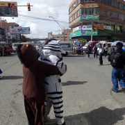 In La Paz regeln als Zebras verkleidete Student*innen den Verkehr