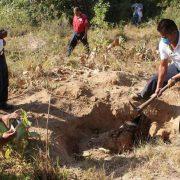 Veracruz: In sieben Jahren 346 geheime Gräber gefunden