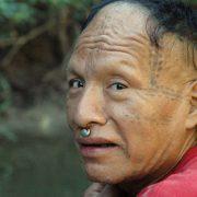 """Grünes Licht für """"Todesstraßen"""" im  Amazonasgebiet"""