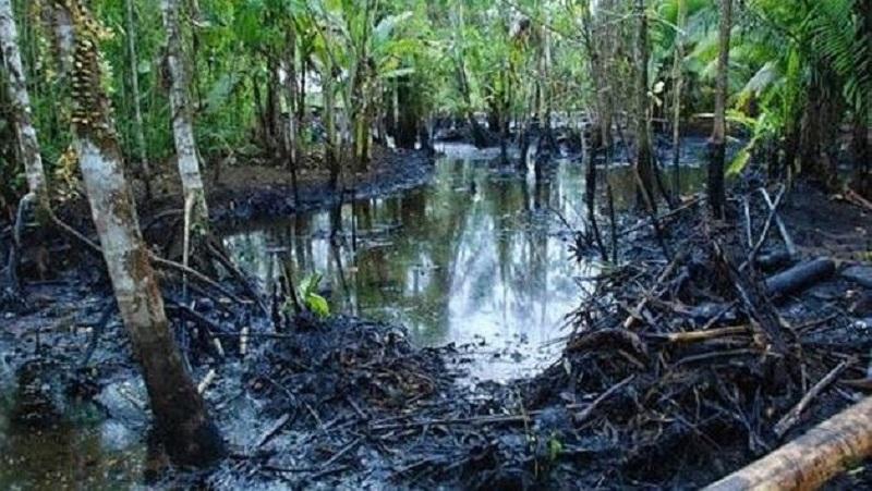 Ölverschmutzung