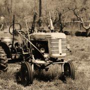 Welches ist das beste Modell für Landwirtschaft in Mexiko?