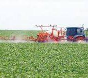 Soja-Anbaufläche wird deutlich ausgeweitet