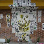 Kunst! – Pflanzen, die der Diktatur des Asphalts trotzen