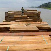 Vier neue Umweltminister*innen in der Amazonasregion