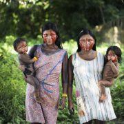 Indigene schützen fast die Hälfte des Waldbestandes in Mittelamerika
