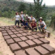 Ökologisches Bauen – Zurück zum Leben