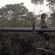 Indigene Territorien im Putumayo durch Erdölindustrie bedroht