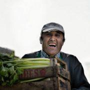 Vom Feld auf den Teller: Wege aus der Wirtschaftskrise