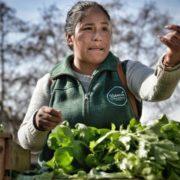 Weg mit dem Hunger! Selbstbestimmte Landwirtschaft und Ernährung