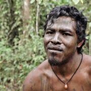 "Holzfäller töten indigenen ""Wächter des Waldes"""