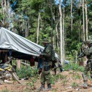 Strategien gegen die Zerstörung Amazoniens