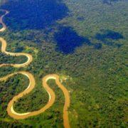 Kritik an geplanter Erdölförderung im Amazonas