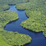 Amazonien in Gefahr