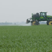 In der EU verbotenes Pestizid verseucht das Wasser