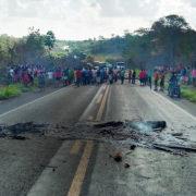Abholzung und Sterben im Amazonas gehen weiter