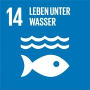 Hinhörer: SDG 14 Leben unter Wasser