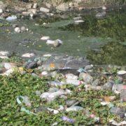 Industrieparadiese und Umwelthöllen