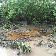 Mitten in der Covid-19-Krise: erneuter Ölunfall im Amazonasgebiet