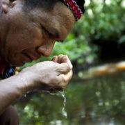 Ökofaschismus und Umwelt-Rassismus: Nebeneffekte der Pandemie
