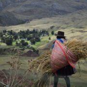 Nachhaltige Entwicklungsziele, Coronapandemie und indigene Perspektiven