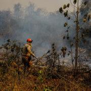 Das Pantanal brennt