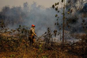 Mato Grosso MT10 09 2020 Bombeiros militar do Mato Grosso fazem teste com retardante para combater incêndios no Pantanal