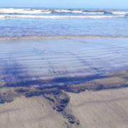 Erneute Ölkatastrophe an der Küste