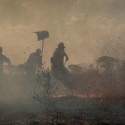 Brände im Pantanal wüten weiter