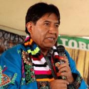 Vizepräsident David Choquehuanca zum Amtsantritt von Luis Arce