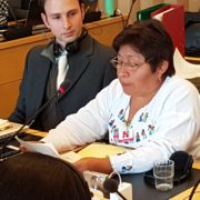Maya-Indigene gewinnt Goldman-Preis 2020